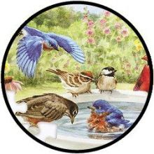 Puzzel - Vogeltjes in bad - 35 stukjes