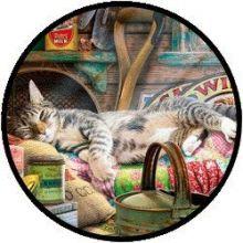 Slapende kat in de schuur (500 XL)