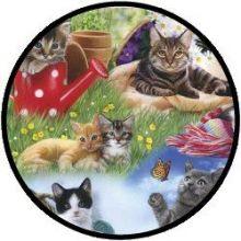 Puzzel - Katten (12 stukjes)